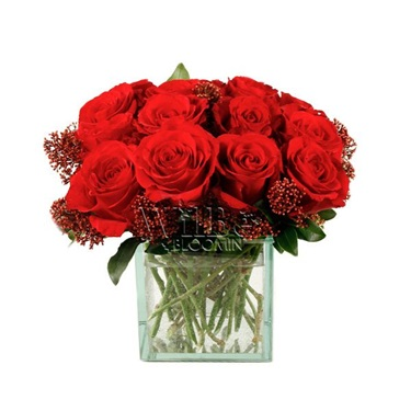 Why are Roses the best Choice for Valentine's Day?