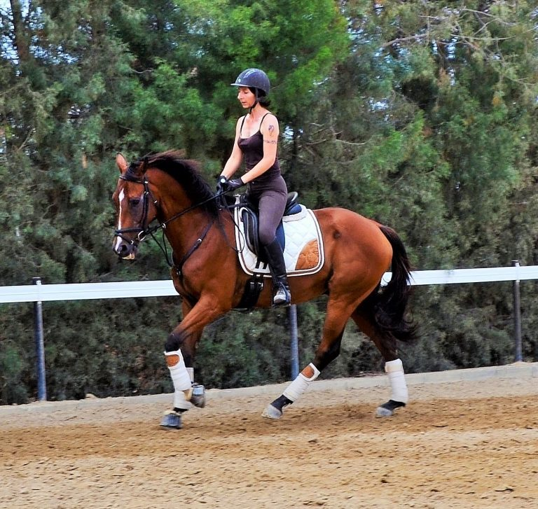 What to Look For When Choosing the Right Equestrian Wear