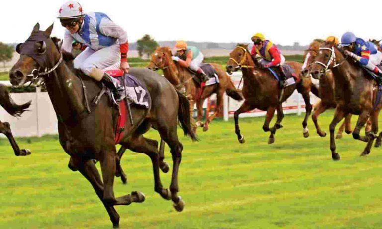 FAQ on Horse Racing Odds
